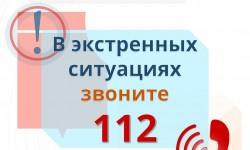 204045849_132132852354697_4699754985496699315_n.jpg